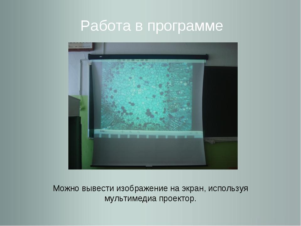 Работа в программе Можно вывести изображение на экран, используя мультимедиа...