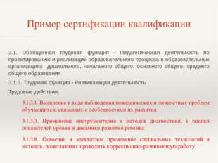 Пример сертификации квалификации 3.1. Обобщенная трудовая функция - Педагогич