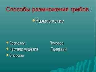 Способы размножения грибов: Размножение Бесполое Половое Частями мицелия Гаме