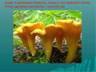 * Ходят в рыженьких беретах, осень в лес приносят летом. Очень дружные сестри