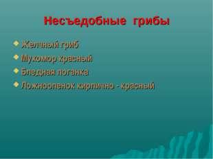 Несъедобные грибы Желчный гриб Мухомор красный Бледная поганка Ложноопенок ки