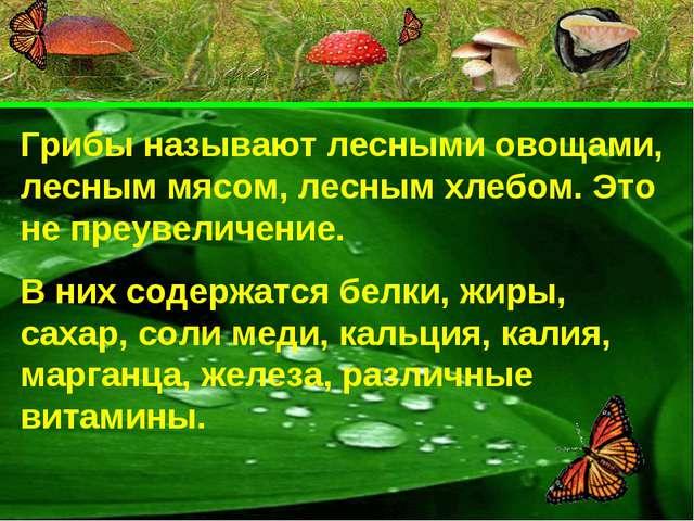 Грибы называют лесными овощами, лесным мясом, лесным хлебом. Это не преувелич...