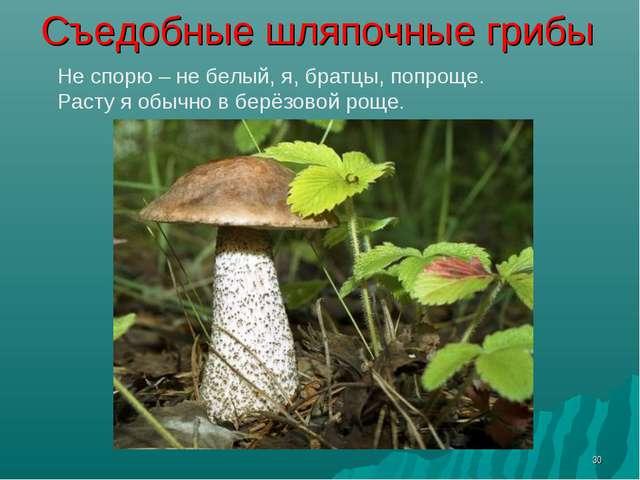* Съедобные шляпочные грибы Не спорю – не белый, я, братцы, попроще. Расту я...