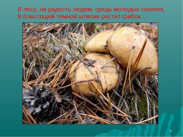 * В лесу, на радость людям, средь молодых сосенок, В блестящей темной шляпке...