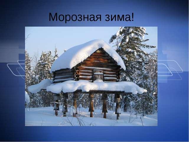 Морозная зима!