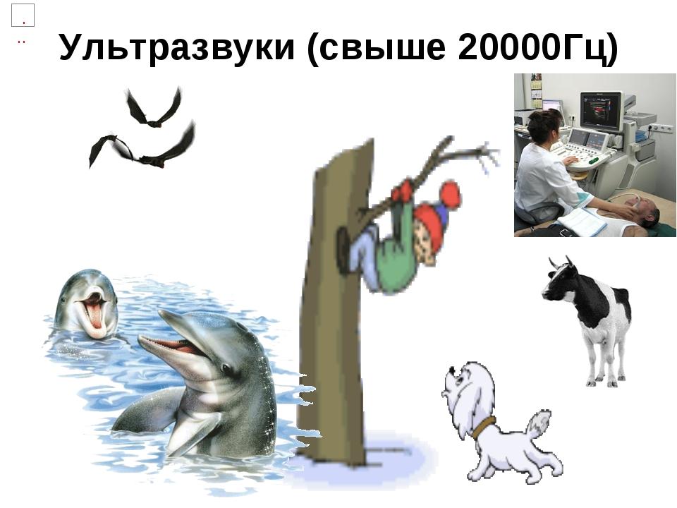 Ультразвуки (свыше 20000Гц)