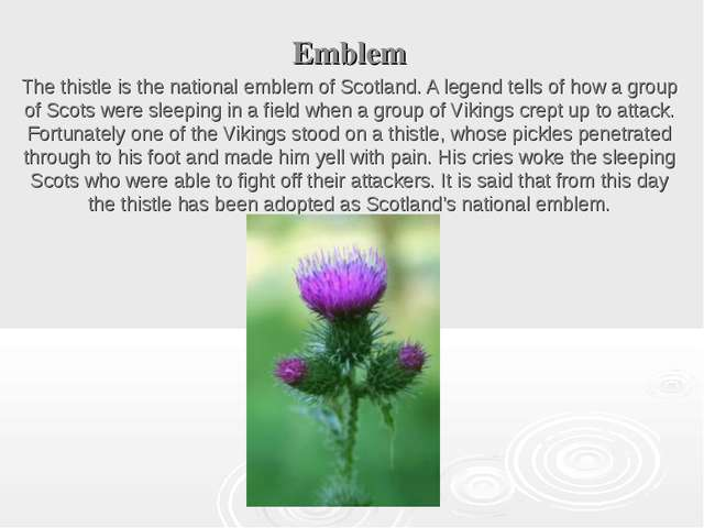 Emblem The thistle is the national emblem of Scotland. A legend tells of how...