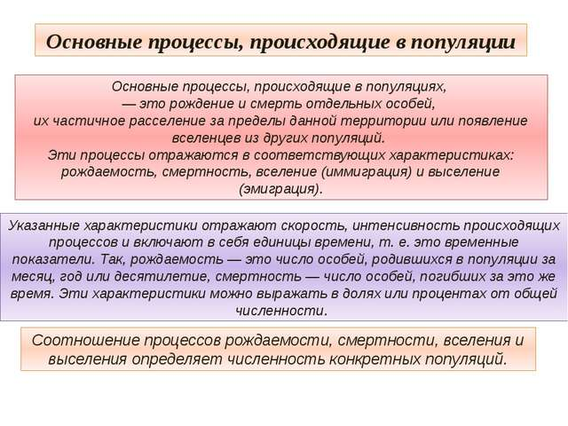 Основные процессы, происходящие в популяции Соотношение процессов рождаемости...
