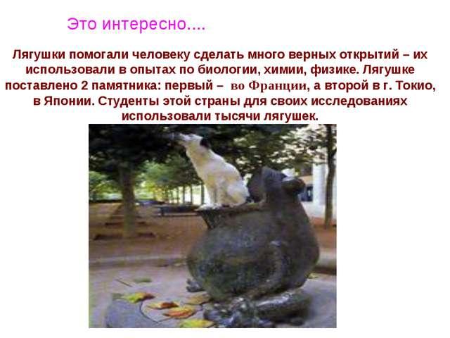 Лягушки помогали человеку сделать много верных открытий – их использовали в о...