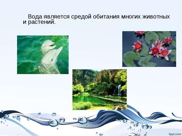 Вода является средой обитания многих животных и растений.