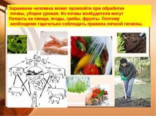 Заражение человека может произойти при обработке почвы, уборке урожая. Из поч