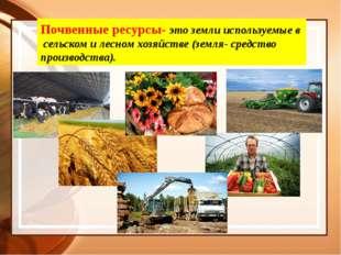 Почвенные ресурсы- это земли используемые в сельском и лесном хозяйстве (земл