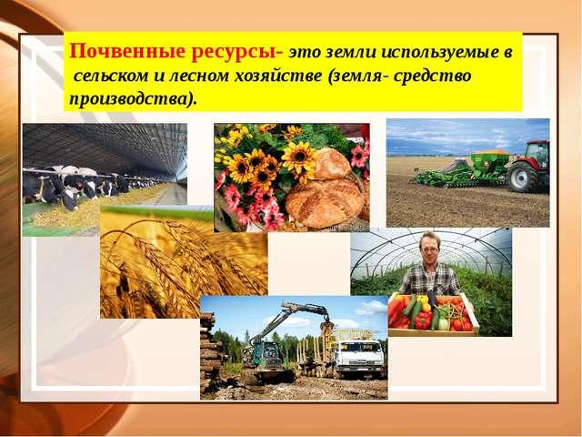 Почвенные ресурсы- это земли используемые в сельском и лесном хозяйстве (земл...