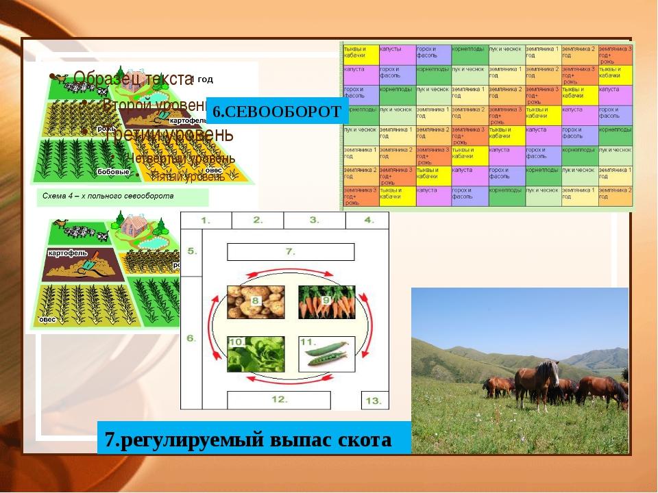 6.СЕВООБОРОТ 7.регулируемый выпас скота