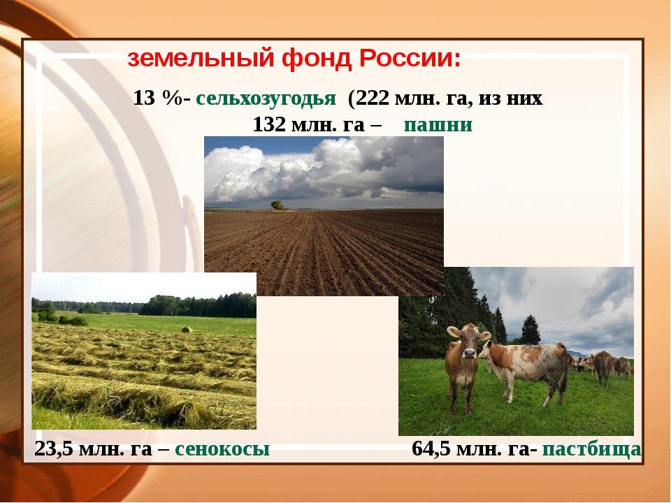 земельный фонд России: 13 %- сельхозугодья (222 млн. га, из них 132 млн. га –...