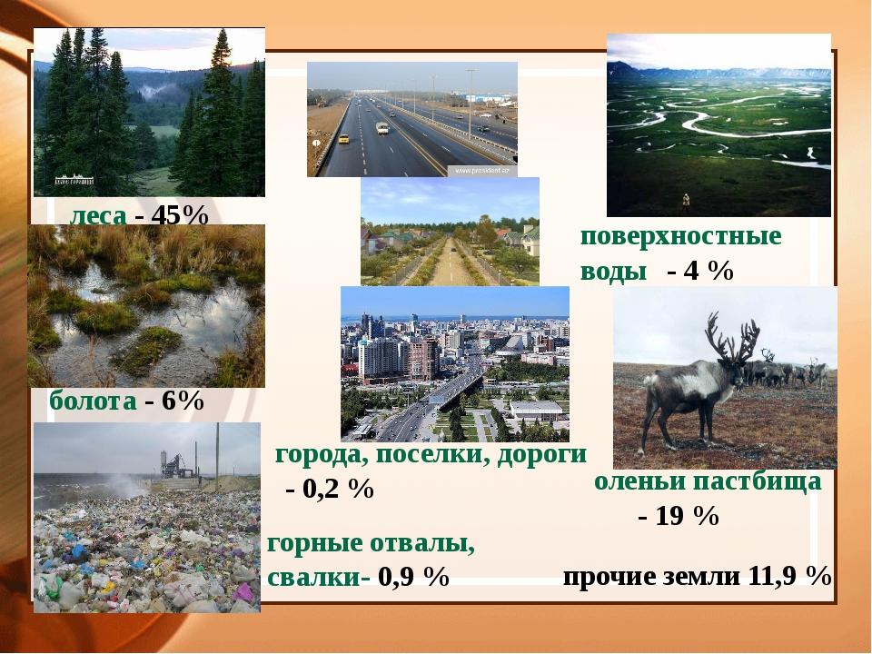 поверхностные воды- 4 % оленьи пастбища- 19 % прочие земли 11,9 % горные...