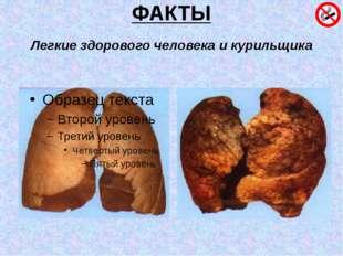 ФАКТЫ Легкие здорового человека и курильщика
