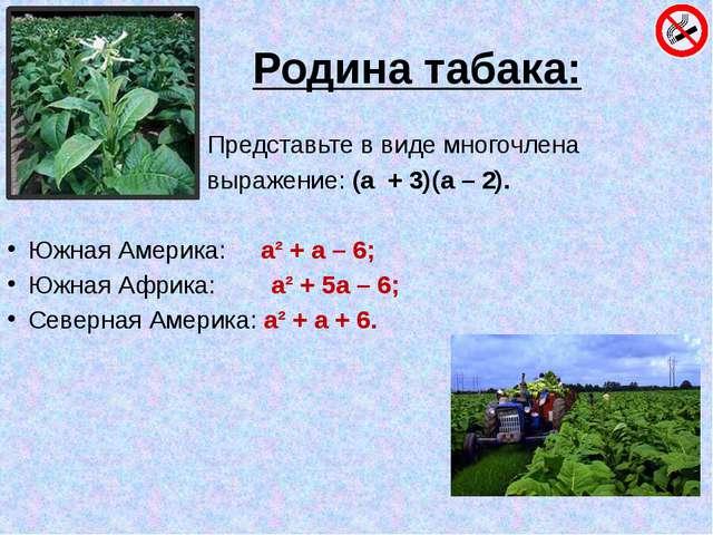 Родина табака: Представьте в виде многочлена выражение: (а + 3)(а – 2). Южна...