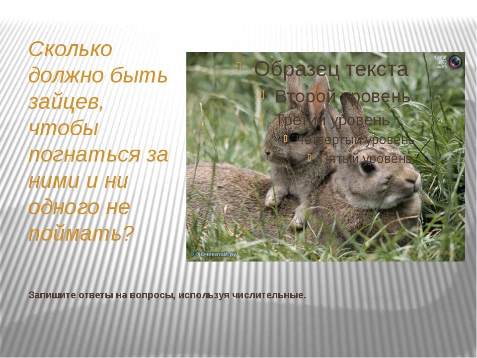 Запишите ответы на вопросы, используя числительные. Сколько должно быть зайце...