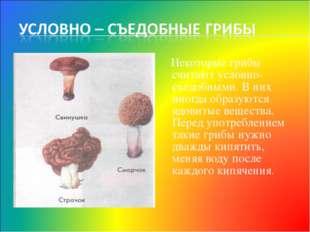 Некоторые грибы считают условно-съедобными. В них иногда образуются ядовитые