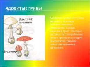 Ядовитые грибы способны вызвать у человека сильные пищевые отравления. Самый