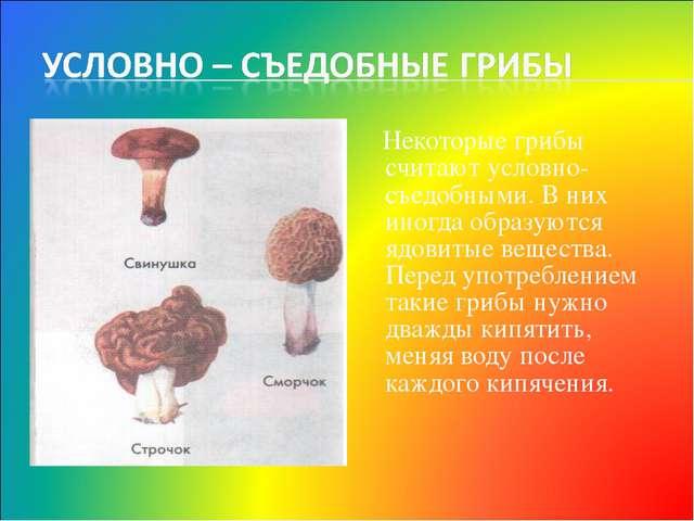 Некоторые грибы считают условно-съедобными. В них иногда образуются ядовитые...