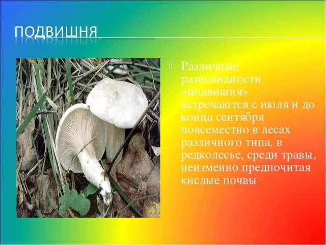 Различные разновидности «подвишня» встречаются с июля и до конца сентября пов...