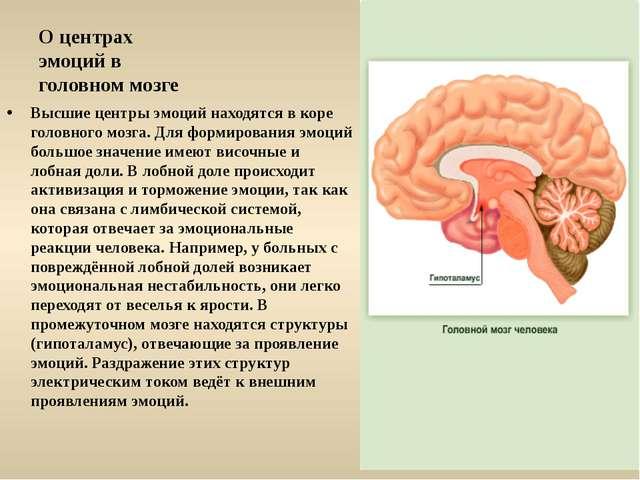 Презентация по биологии по теме quot Эмоции quot класс  О центрах эмоций в головном мозге Высшие центры эмоций находятся в коре голов