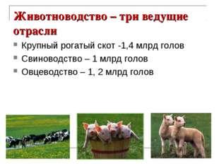 Животноводство – три ведущие отрасли Крупный рогатый скот -1,4 млрд голов Сви