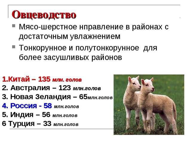Овцеводство Мясо-шерстное нправление в районах с достаточным увлажнением Тонк...