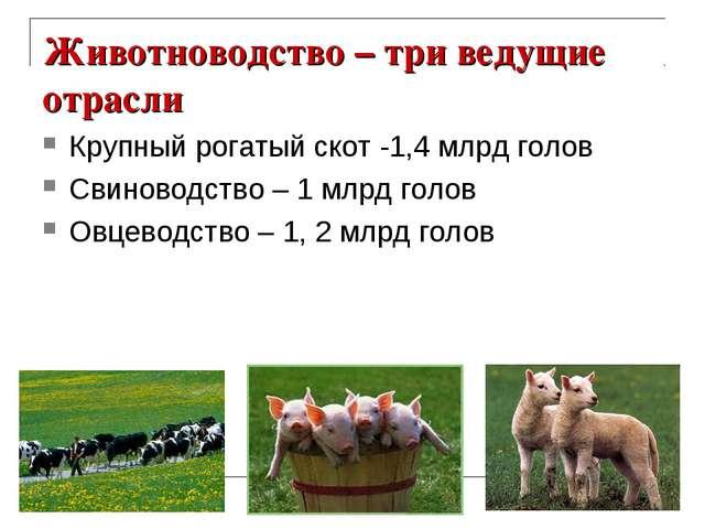 Животноводство – три ведущие отрасли Крупный рогатый скот -1,4 млрд голов Сви...