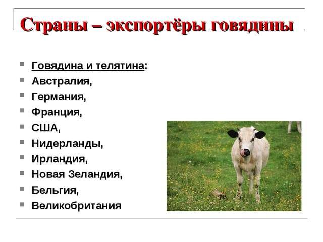 Страны – экспортёры говядины Говядина и телятина: Австралия, Германия, Франци...