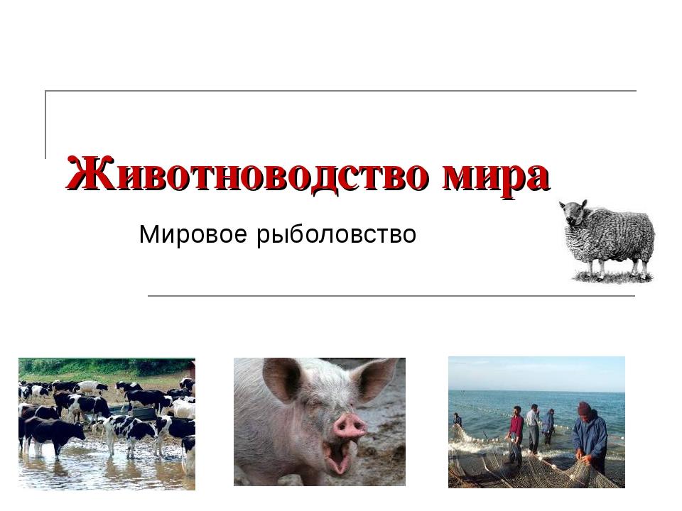 Животноводство мира Мировое рыболовство