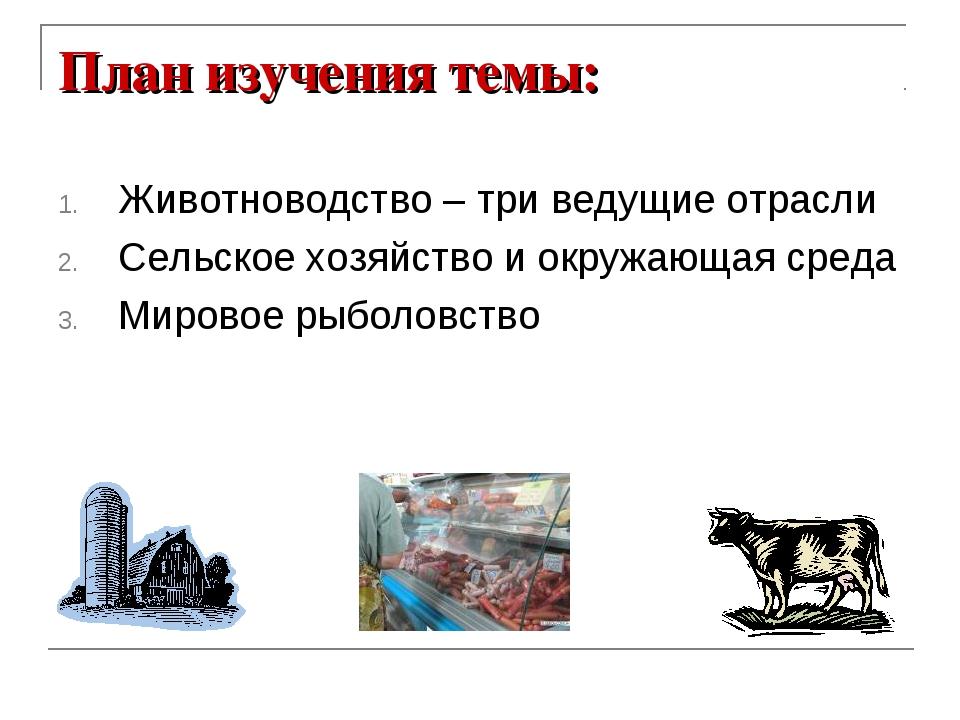 План изучения темы: Животноводство – три ведущие отрасли Сельское хозяйство и...