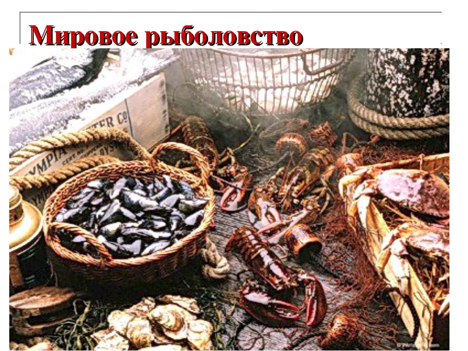 Мировое рыболовство Год Доля в мировом улове рыбы и добыче морепродуктов, %...