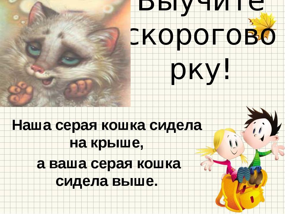 Выучите скороговорку! Наша серая кошка сидела на крыше, а ваша серая кошка си...