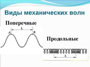 Виды механических волн Поперечные Продольные