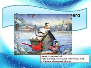 Зимующие птицы нашего города Автор: Агальцова Е.В, учитель начальных классов