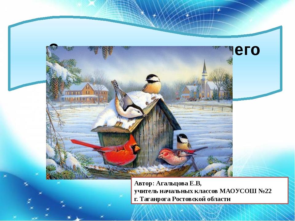 Зимующие птицы нашего города Автор: Агальцова Е.В, учитель начальных классов...