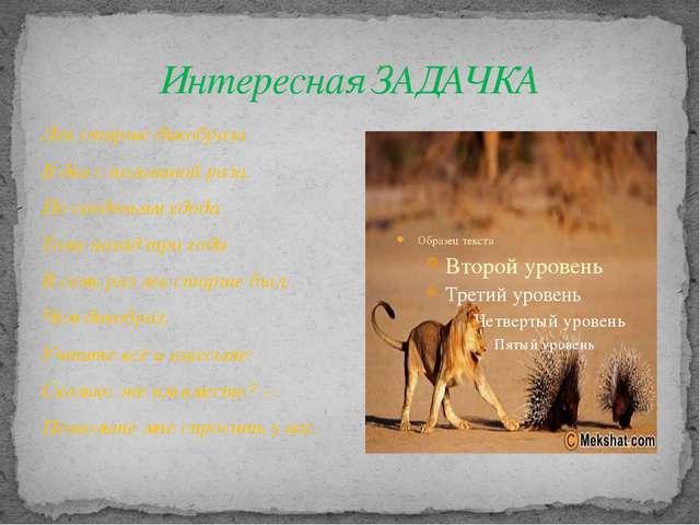 Интересная ЗАДАЧКА Лев старше дикобраза В два с половиной раза. По сведеньям...