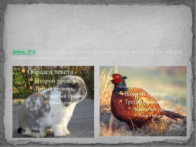 Задача № 4. В клетке находятся фазаны и кролики. Известно, что у них 35 голо...