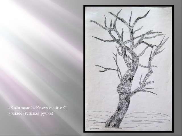 «Клён зимой» Кряучюнайте С. 7 класс (гелевая ручка)