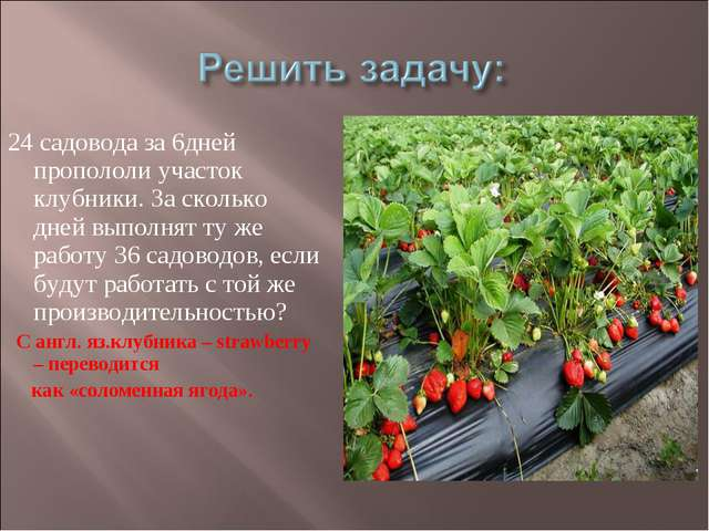 24 садовода за 6дней пропололи участок клубники. За сколько дней выполнят ту...