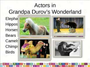 Actors in Grandpa Durov's Wonderland Elephants Hippos Horses Bears Camels Chi