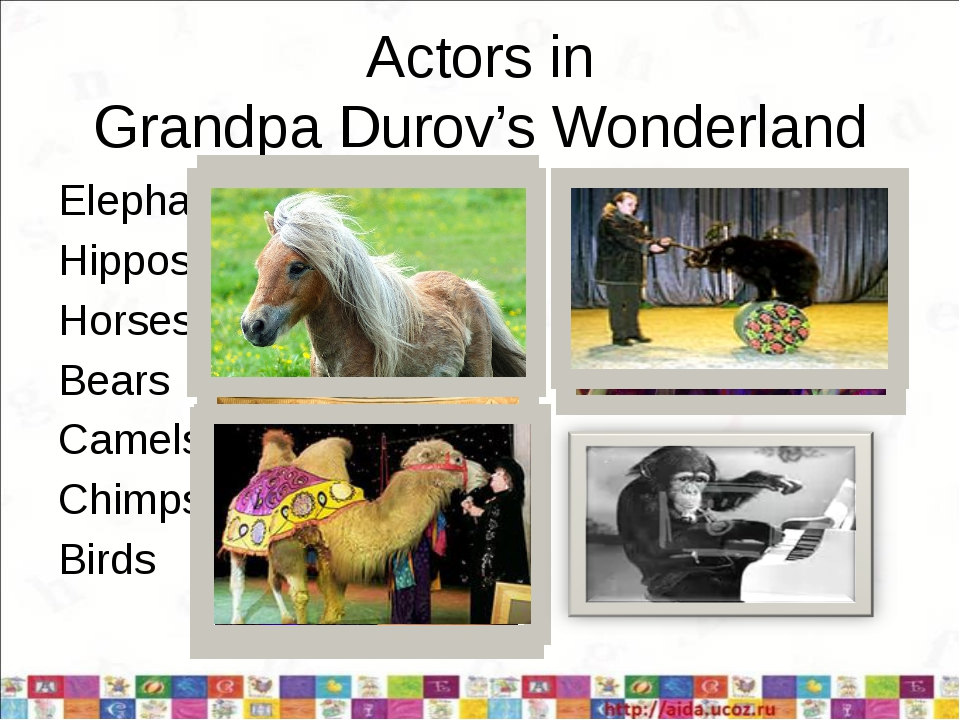 Actors in Grandpa Durov's Wonderland Elephants Hippos Horses Bears Camels Chi...