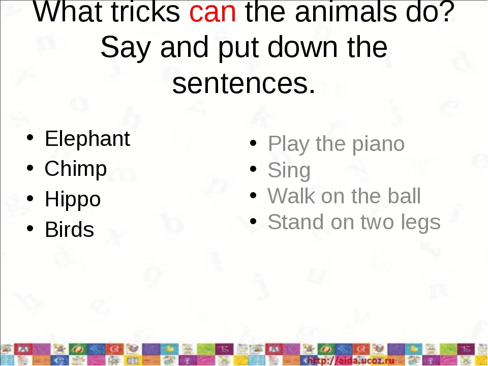 What tricks can the animals do? Say and put down the sentences. Elephant Chim...