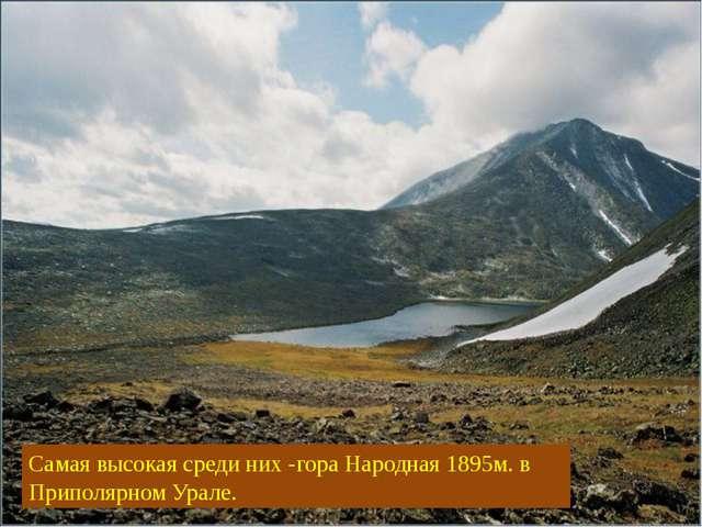 Самая высокая среди них -гора Народная 1895м. в Приполярном Урале.