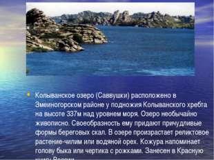 Колыванское озеро (Саввушки) расположено в Змеиногорском районе у подножия К