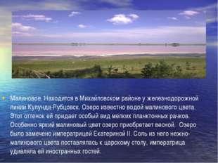 Малиновое. Находится в Михайловском районе у железнодорожной линии Кулунда-Р