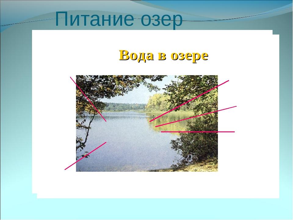 Питание озер
